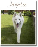 022_Jerry-Lee_2014