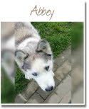 081_Abbey_RBB